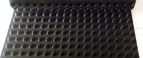 娄底塑料排水板价格--中国梦 我的梦