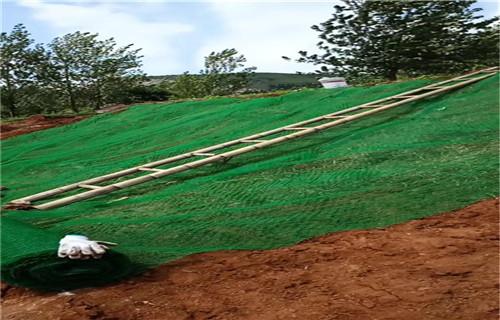 吉林三维植被网货源充足河道治理