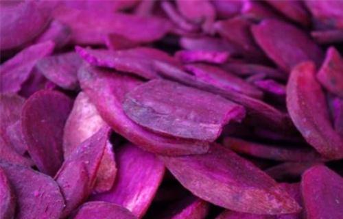 嘉兴紫薯收购(东风八号)种植技术