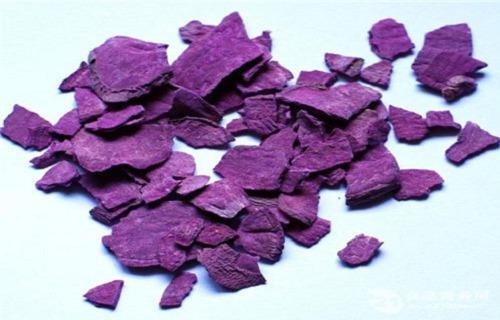 嘉兴紫薯(东风八号)收购报价